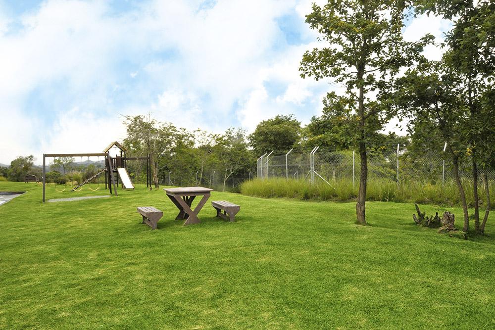 áreas verdes - POSI
